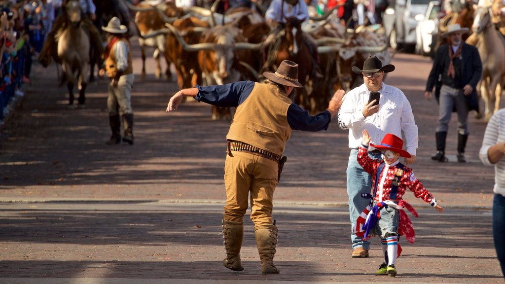 Fort Worth Stockyards which includes a festival as well as an individual male