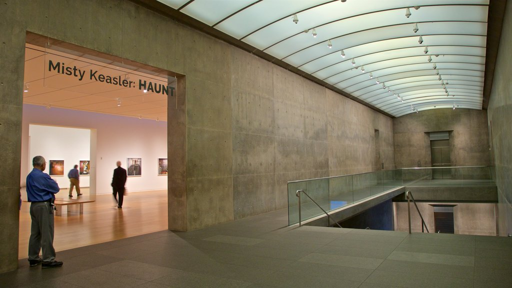 Modern Art Museum of Fort Worth featuring interior views as well as an individual male
