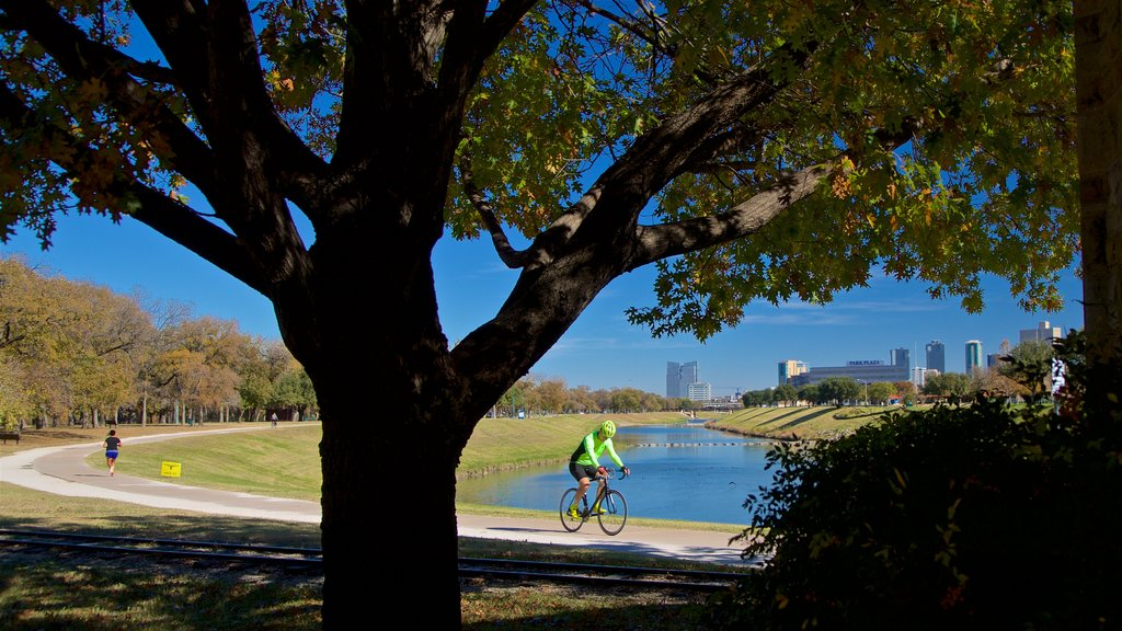 Trinity Park which includes a river or creek and cycling as well as an individual male