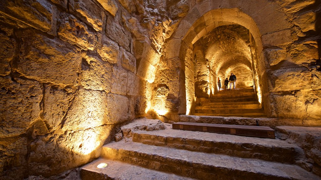Ajloun Castle showing heritage elements and interior views