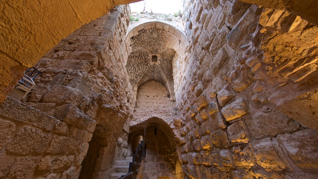 Ajloun Castle which includes building ruins and heritage elements