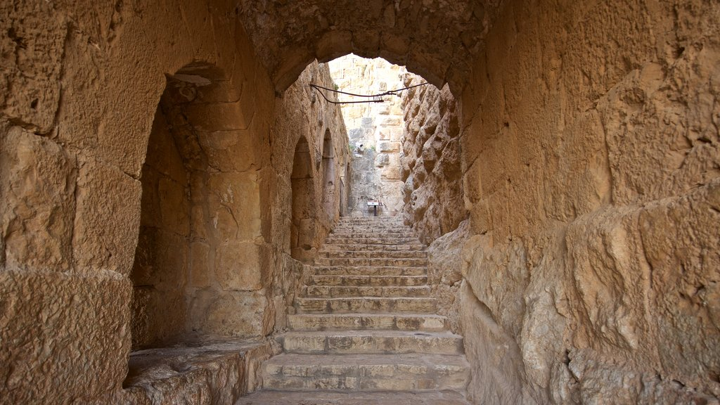 Ajloun Castle which includes interior views and heritage elements