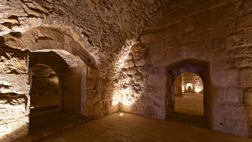 Ajloun Castle showing interior views and heritage elements