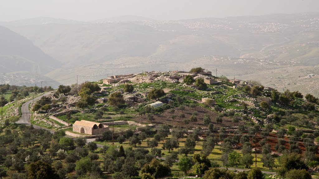 Tell Mar Elias featuring tranquil scenes and landscape views