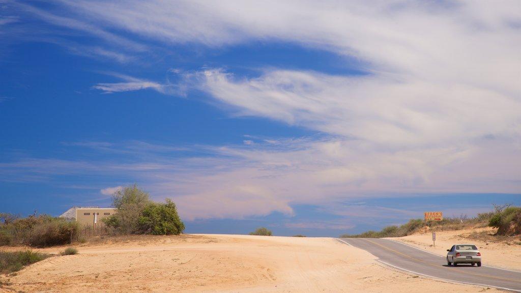 La Ribera featuring desert views