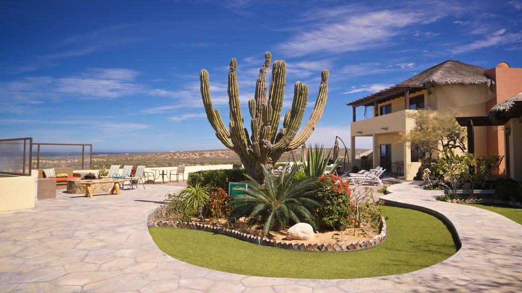 La Ribera showing a garden