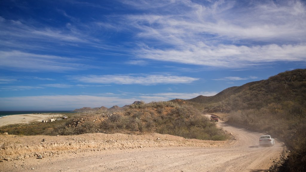 Cabo Pulmo which includes desert views and landscape views