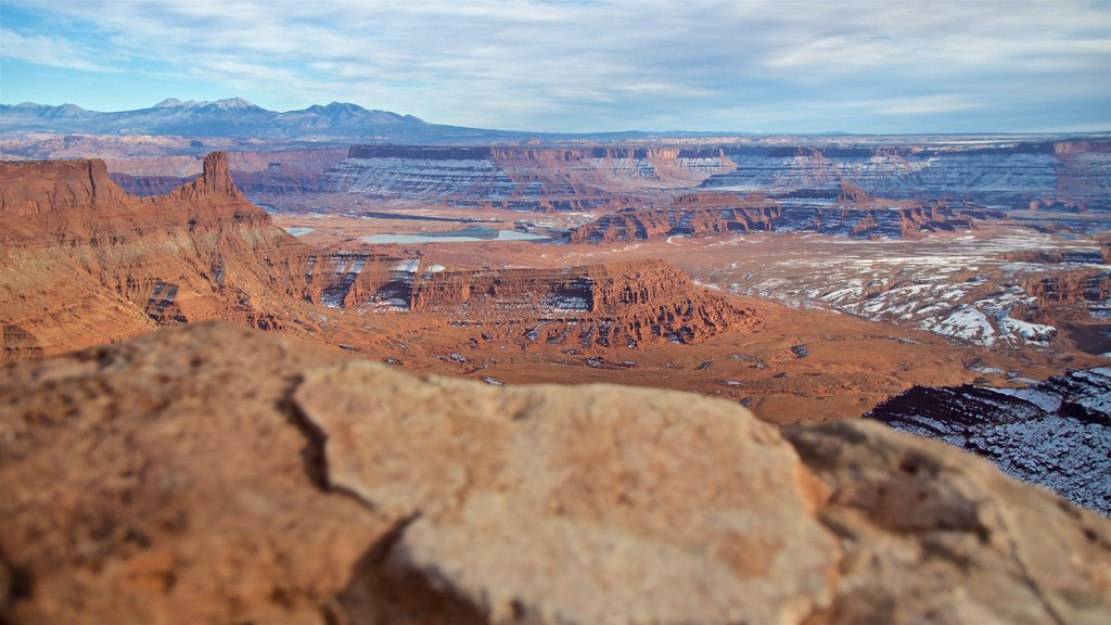 Dead Horse Point State Park which includes a gorge or canyon, landscape views and desert views