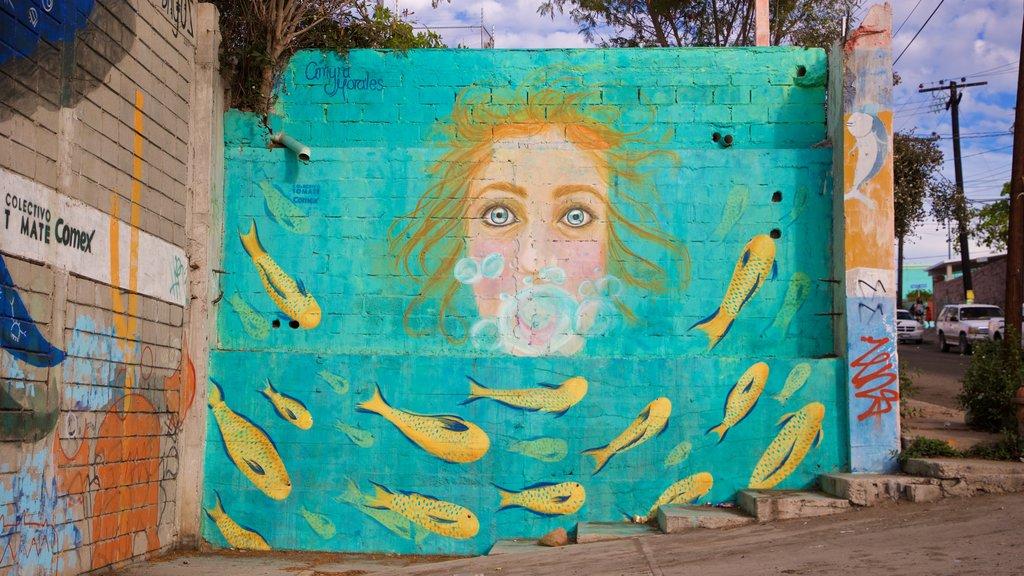La Paz showing outdoor art