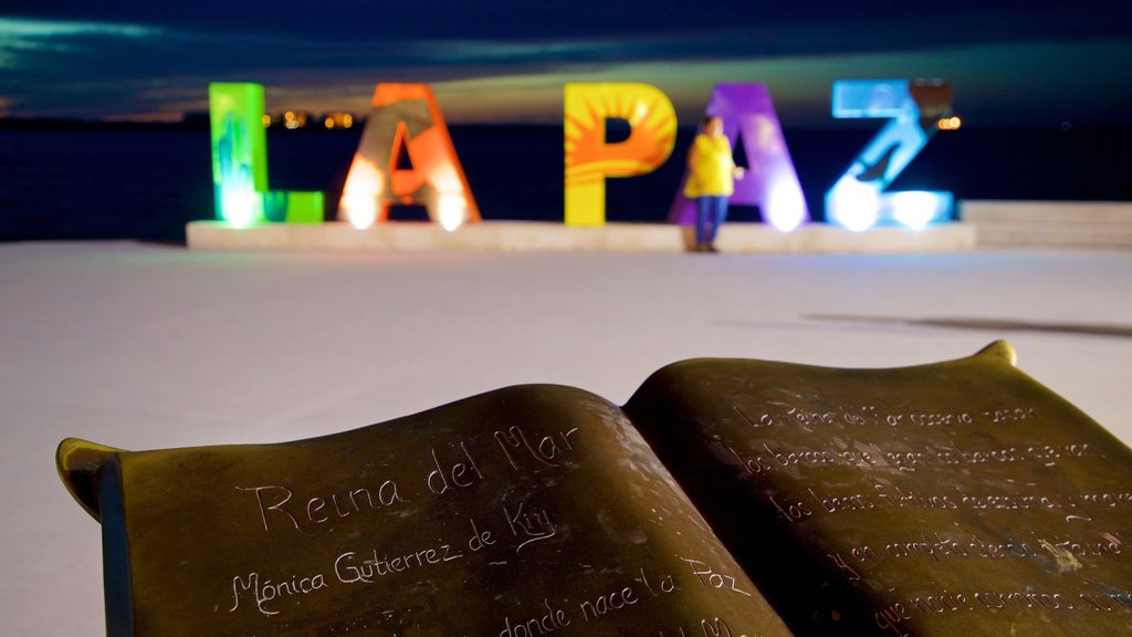 La Paz featuring outdoor art and night scenes