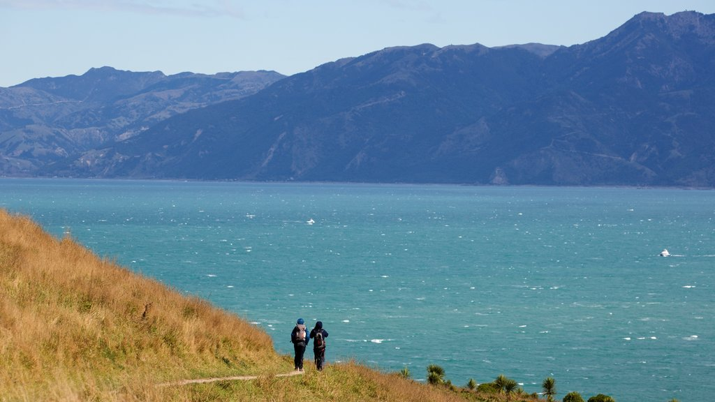 Peninsula Walkway which includes landscape views, a lake or waterhole and hiking or walking