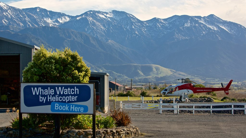 Kaikoura which includes landscape views, signage and an aircraft
