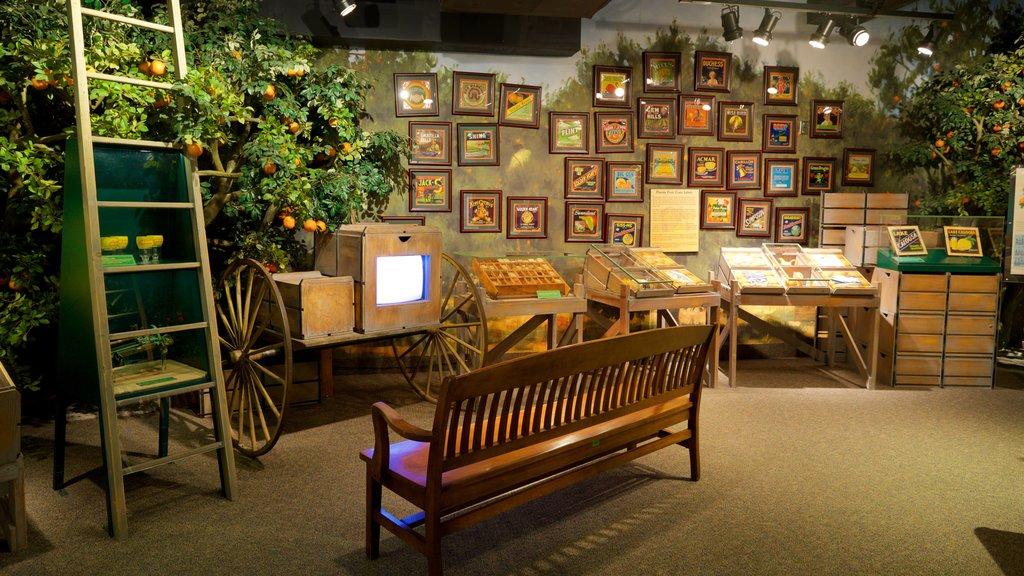 Orange County Regional History Center showing interior views and general coastal views