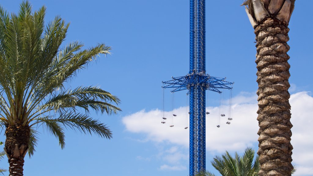 Orlando which includes rides