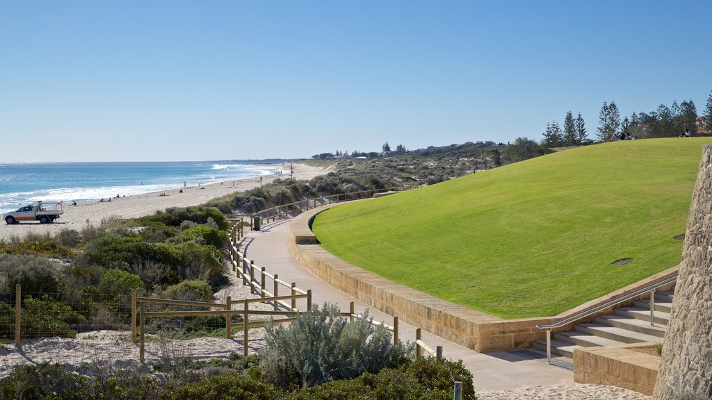 Scarborough Beach featuring a park, general coastal views and landscape views