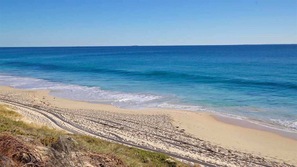 Floreat Beach showing a beach, landscape views and general coastal views