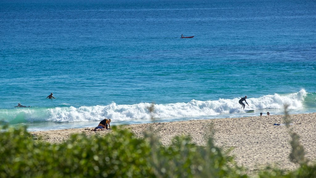 Sorrento Beach which includes general coastal views, a beach and surfing