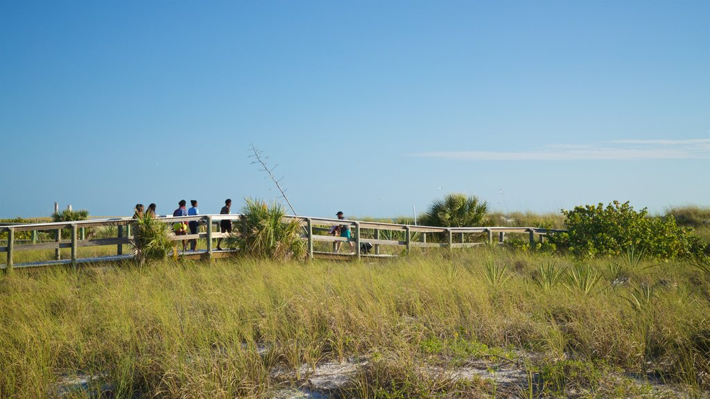 St. Pete Beach which includes general coastal views as well as a small group of people