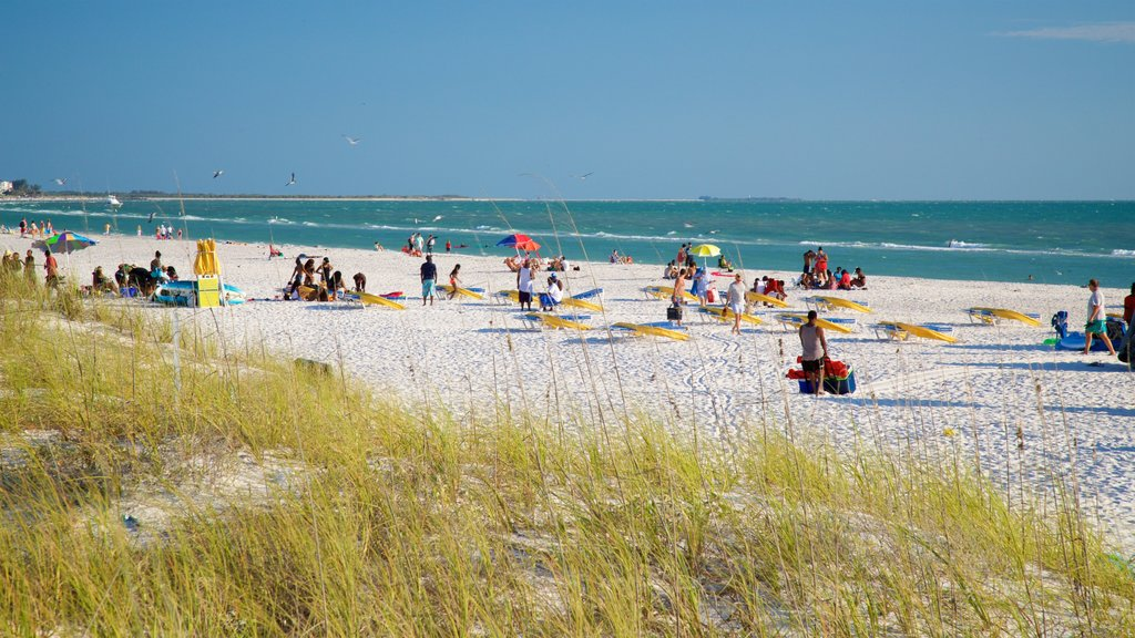St. Pete Beach showing a beach and general coastal views as well as a small group of people