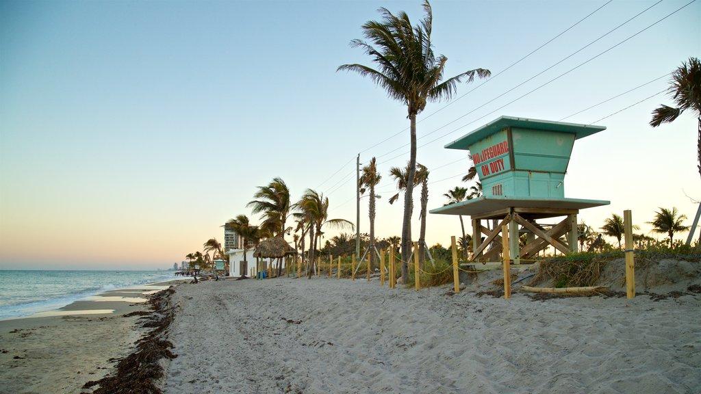 Dania Beach featuring a sunset, general coastal views and a sandy beach