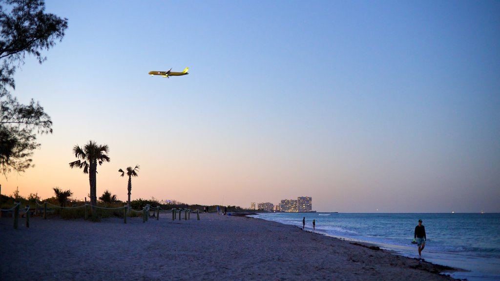 Dania Beach showing a sunset, general coastal views and a sandy beach