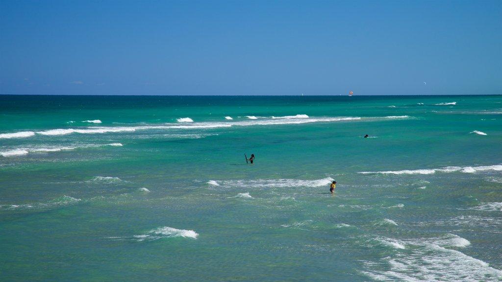 Dania Beach featuring general coastal views