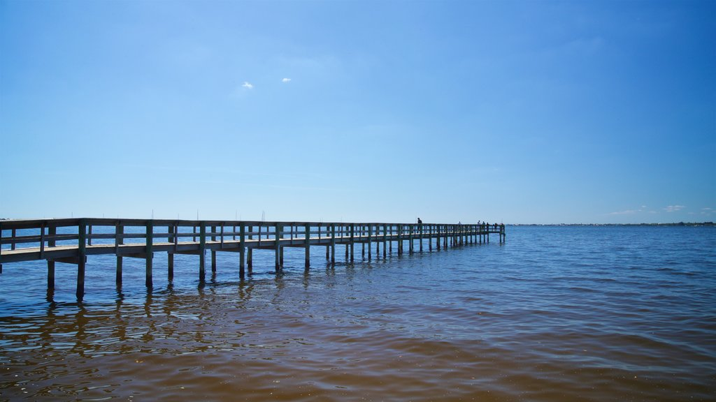 Punta Gorda featuring general coastal views