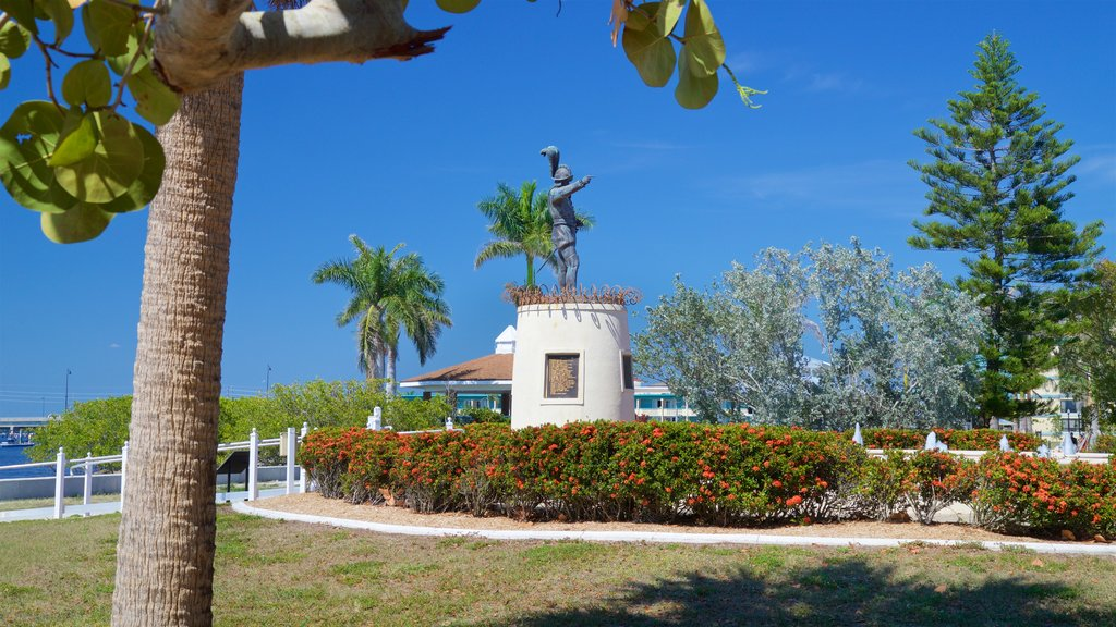 Punta Gorda showing wildflowers and a park