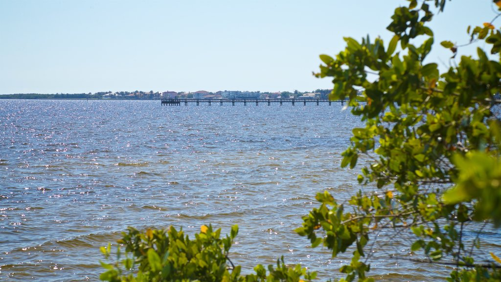 Port Charlotte showing general coastal views