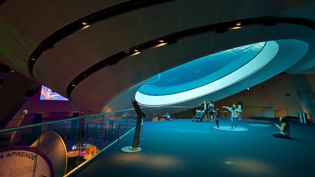 Miami Museum of Science and Space Transit Planetarium featuring interior views and marine life as well as a small group of people