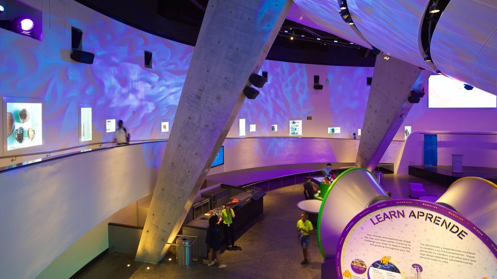 Miami Museum of Science and Space Transit Planetarium showing interior views