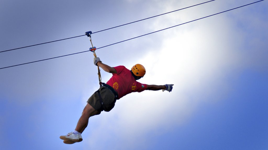 Cozumel which includes zip lining and a sporting event as well as an individual male