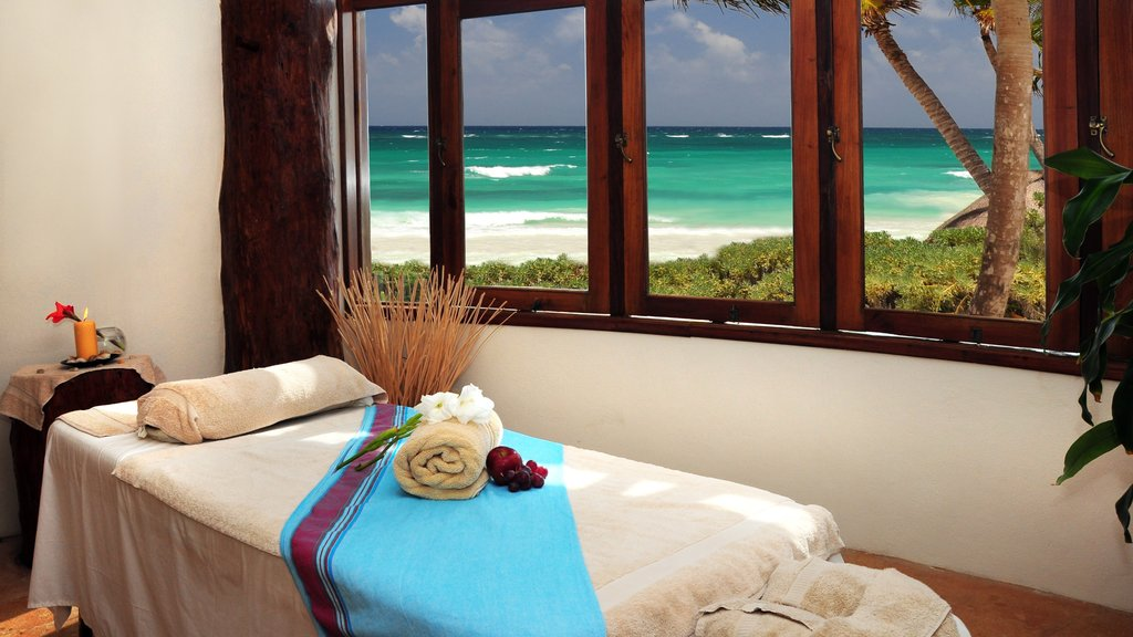 Riviera Maya which includes interior views and tropical scenes