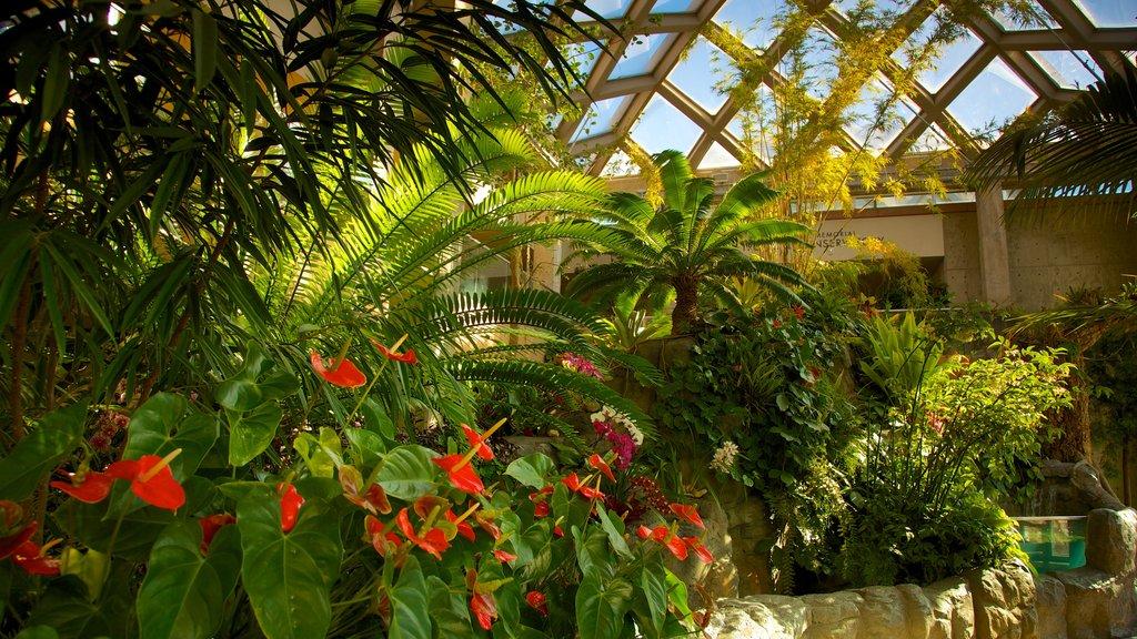 Jardín botánico de Denver ofreciendo flores, un parque y vistas interiores