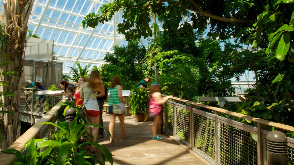 Moody Gardens which includes a garden and interior views