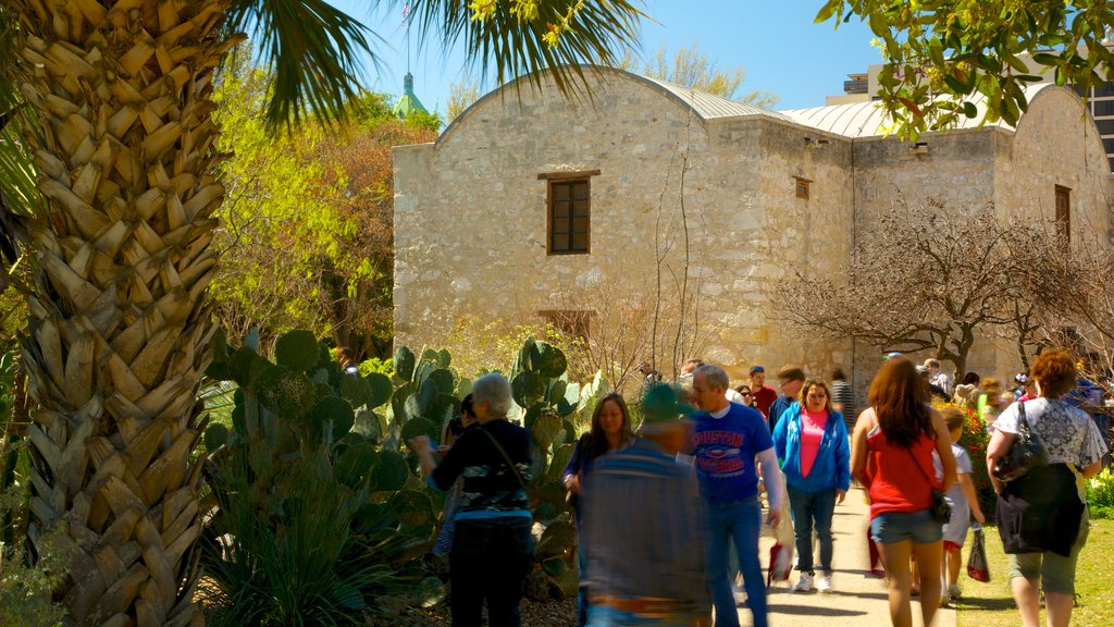 Alamo showing heritage architecture as well as a large group of people
