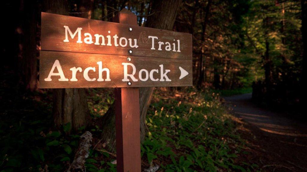 Mackinac Island showing signage