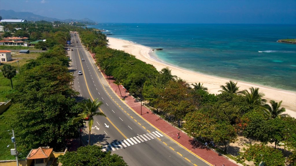 Dominican Republic showing a coastal town, tropical scenes and a sandy beach