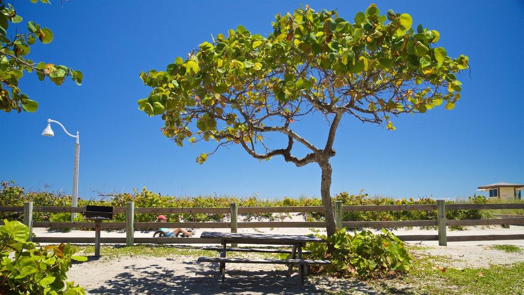 Hollywood North Beach Park que inclui um jardim e uma praia
