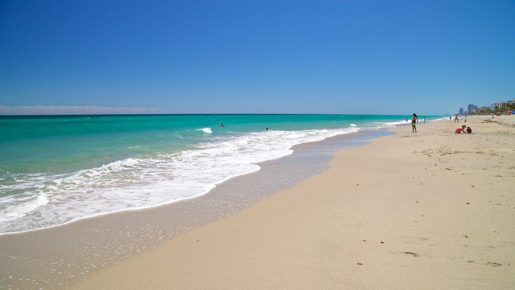 Hollywood North Beach Park caracterizando uma praia e paisagens litorâneas