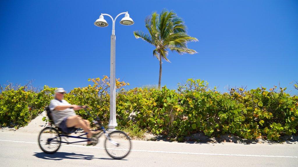 Hollywood North Beach Park que inclui ciclismo urbano assim como um homem sozinho