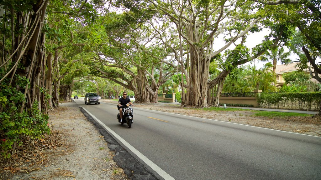 Old Cutler Trail which includes a garden and motorbike riding as well as an individual male