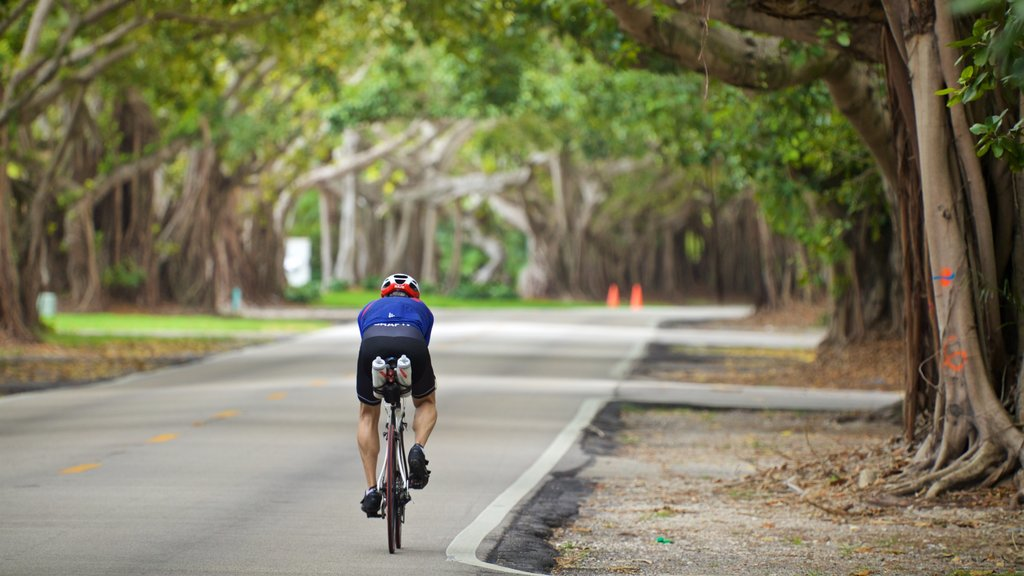 Old Cutler Trail which includes a park and road cycling as well as an individual male