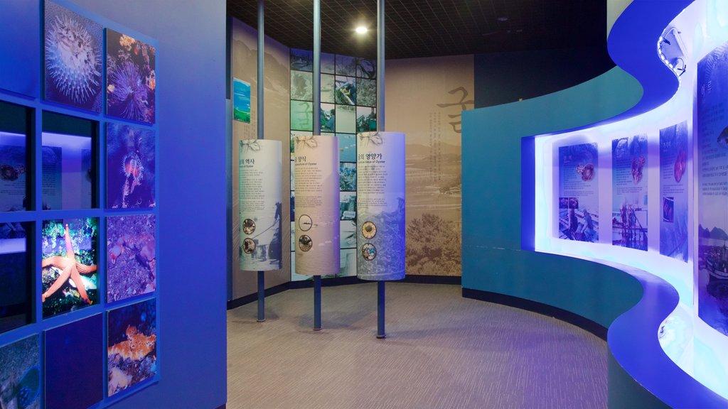 Geoje Sea Village Folk Museum showing marine life and interior views