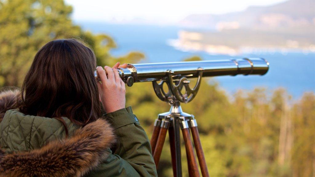 Tasman Peninsula showing views as well as an individual femail