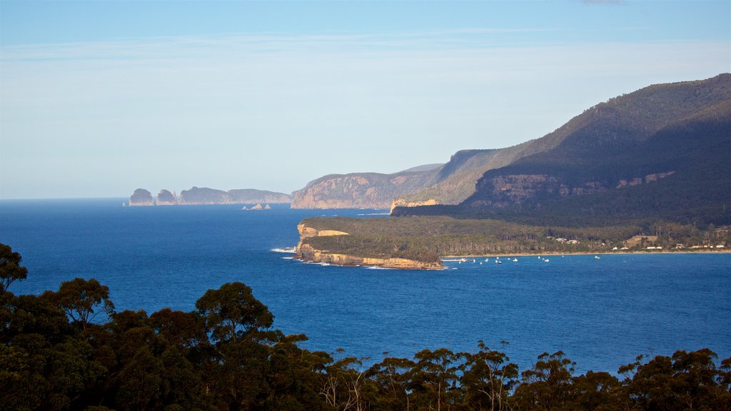 Eaglehawk Neck which includes landscape views, general coastal views and rocky coastline