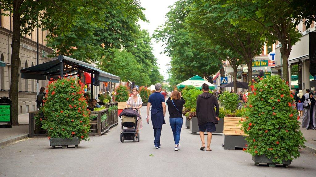Plaza Mariatorget mostrando flores silvestres y escenas urbanas y también un pequeño grupo de personas
