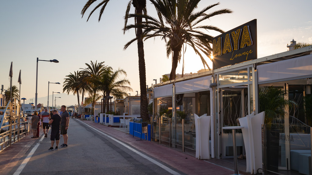 Marbella Marina which includes signage and a sunset