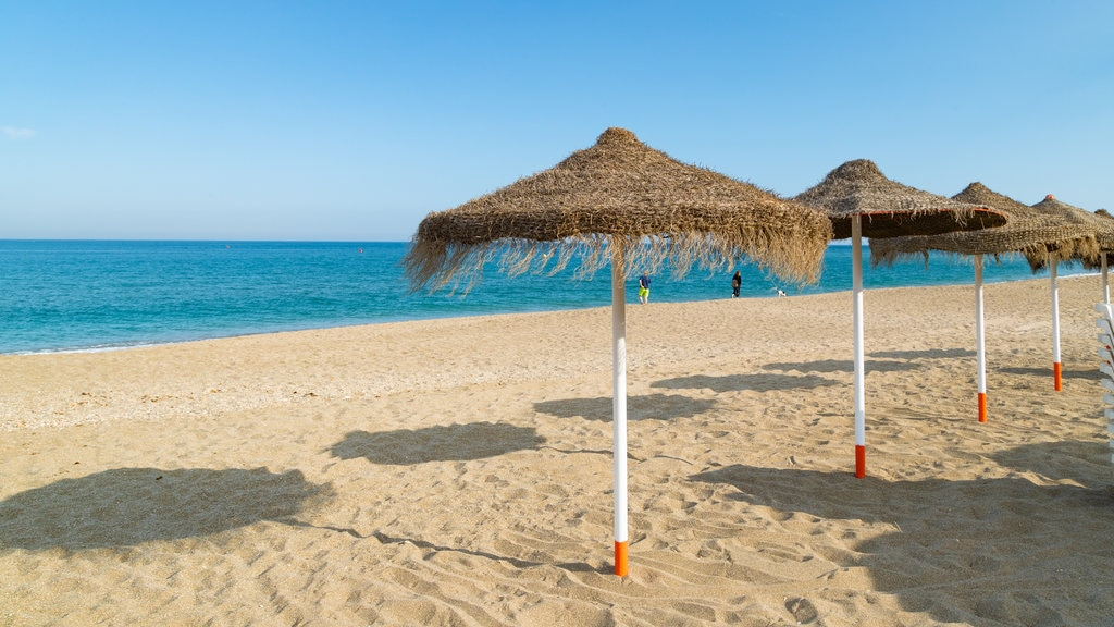 Fuengirola Beach which includes general coastal views, tropical scenes and a sandy beach