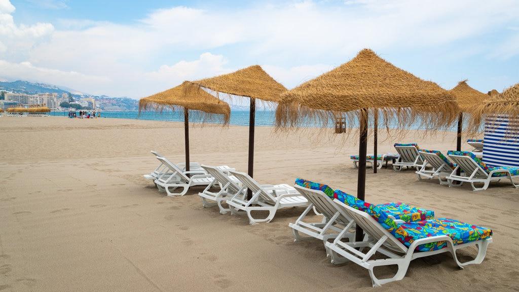 Playa Las Gaviotas mostrando vistas generales de la costa, escenas tropicales y una playa de arena